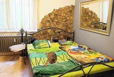 Pronájem bytu 3+1 s balkonem Brno Starý Lískovec